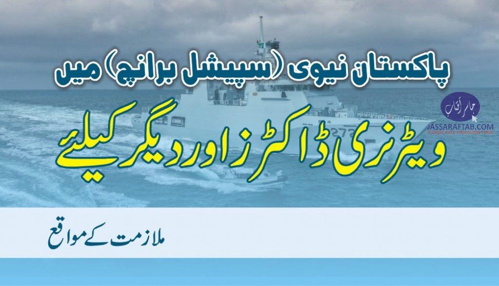 Vet jobs in Pakistan Navy