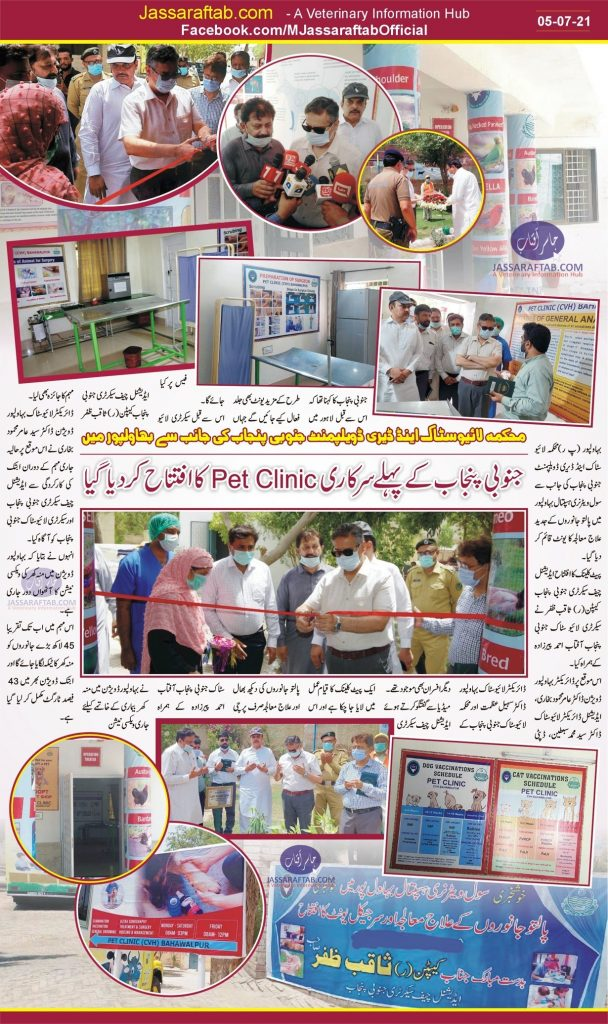 government pet clinic of bahwalpur