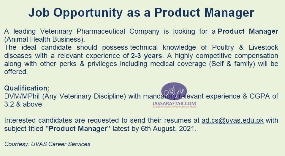 Product Manager DVM Jobs