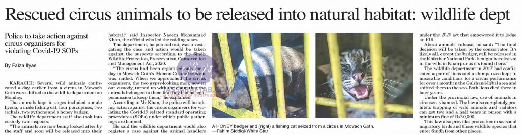 Rescued circus animals to be released into natural habitat