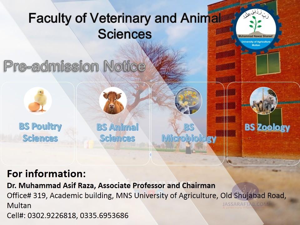 animal sciences degree