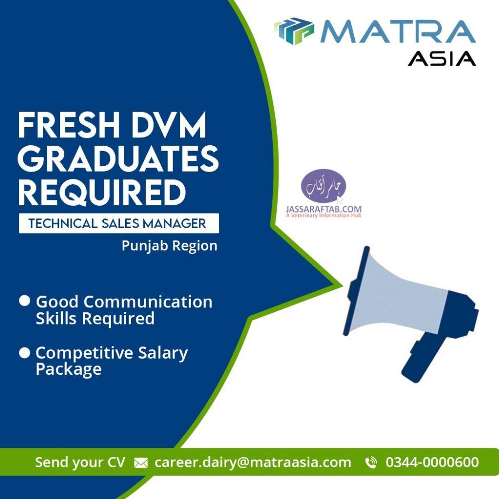DVM Jobs at Matra Asia