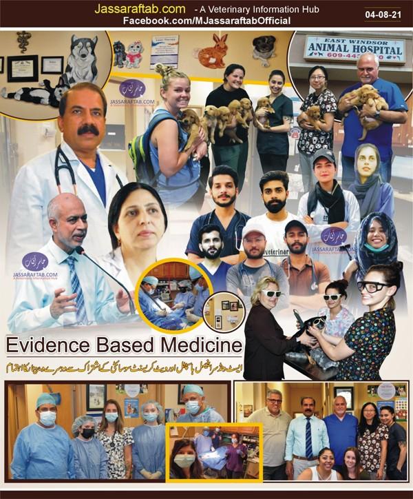 Evidence based medicine in veterinary practice