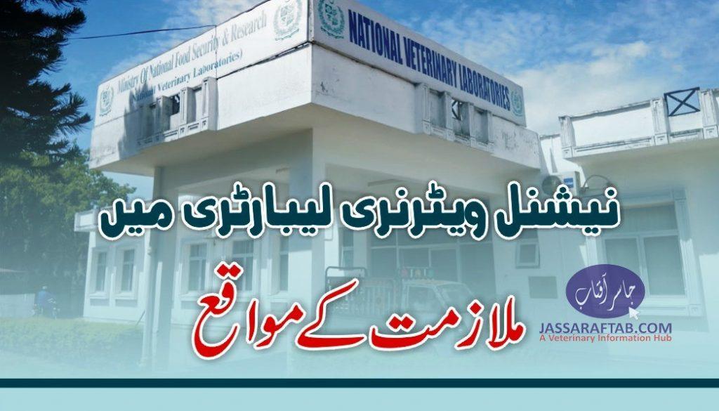 National Veterinary Laboratory Job