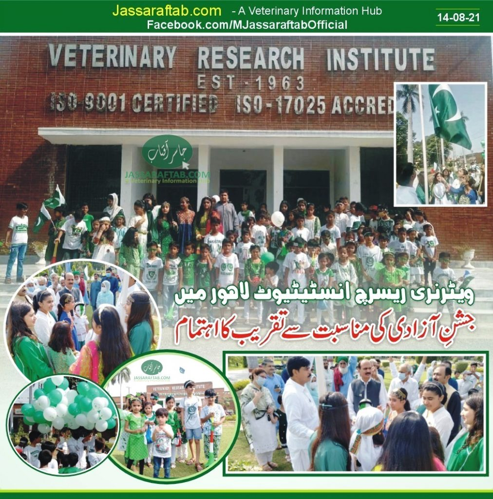 VRI Lahore
