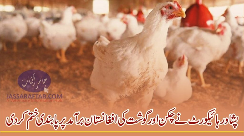 PHC lifts ban on export of chicken, meat