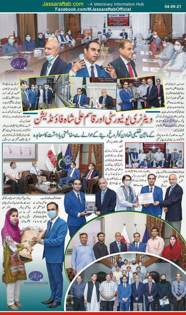 Qasim Ali Shah Foundation
