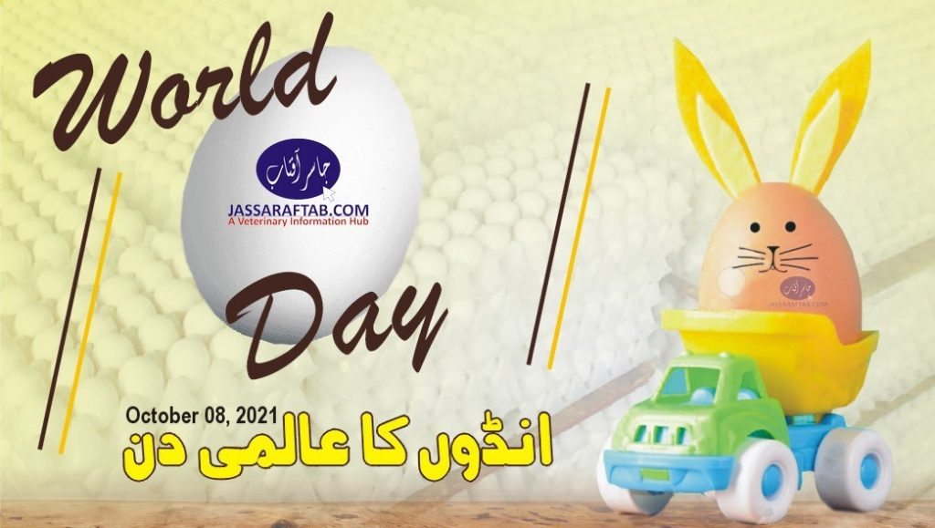 World egg day in Pakistan